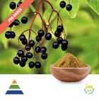 Elderberry Extract 10:1 Preorder