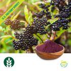 Black Elderberry Extract Powder