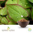 Epimedium Icariin 10% by Ingredients by Nature