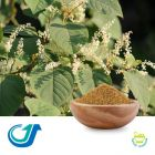 Flowery Knotweed Stem 5:1 Full-Spectrum Extract by Tianjiang Pharmaceutical Co., LTD.