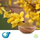 Forsythia Fruit 20:1 Full-Spectrum Extract by Tianjiang Pharmaceutical Co., LTD.
