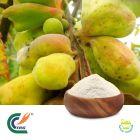 Galla Chinensis P.E  82% Tannin by TRG