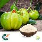 Garcinia Cambogia P.E 60% HCA (cGMP)