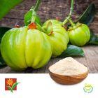 Garcinia Cambogia 50% HCA Granules by Umalaxmi