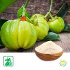 Garcinia Cambogia P.E. 60% HCA
