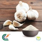 Garlic Extract 4:1 by Hanzhong Trg Bioctech Co., Ltd.