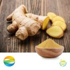 Ginger CO2 Extract 5% Gingerols HPLC