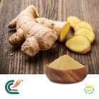Ginger Root Extract 5% Gingerols (cGMP)
