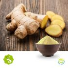 Ginger Extract 5% Gingerol by Hunan Essence