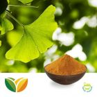 Ginkgo Biloba Leaf Extract USP39 by Tianhua Pharmaceutical