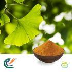 Ginkgo Biloba Extract 24/6% Ginkgolic Acid