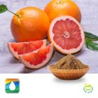Grapefruit Extract 45%