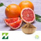 Grapefruit Seed Extract 10% Naringin HPLC