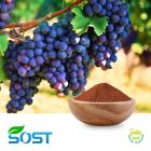 Grape Seed Extract 98%Proan by Xi An Sost Biotech Co., Ltd