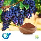 Grape Seed Extract Powder 95% by Tianjiang