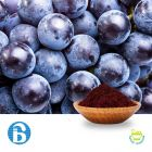 Grape Skin Extract 20% Polyphenols