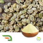 Green Coffee Bean Ext 10%CA by Chongqing Joywin Natural Products Co.,Ltd.