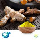 High Bioavailability Curcumin 40% by Tianjiang