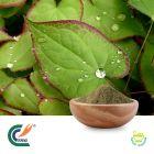 Horny Goat Weed(Epimedium) Extract 20% Icariin (cGMP)