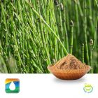 Horsetail Extract 7% Silica (UV) by Monteloeder