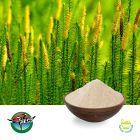Huperzine A 1% by Ningbo Herb