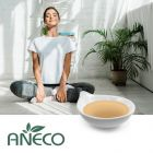 Hydroxytyrosol 98% by SOHO ANECO Chemicals Co., Ltd.