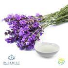 Lavender Oil by Robertet