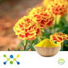 Lutein 5% Powder (Marigold Ext)  (Irradiated) by Shaanxi Undersun Biomedtech Co., Ltd