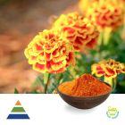Lutein 5% CWS Powder by KS Nutripharma