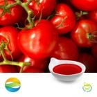 Lycopene 6% Oil by CCGB