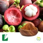 Mangosteen Fruit Powder by Longze Biotechnology