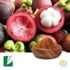 Mangosteen Fruit Powder by Longze Biotechnology