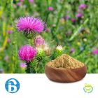 Milk Thistle P.E. 80% Silymarin by BannerBio Nutraceuticals, Inc.