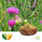 Milk Thistle 80% Silymarin by Tianhua Pharmaceutical
