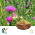 Milk Thistle 80% Silymarin