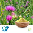 Milk Thistle Extract Powder by Tianjiang