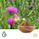 MILK THISTLE POWDER STEAM TREATED by S.A. Herbal Bioactives