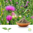 Milk Thistle Seed Powder by American Botanicals