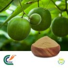 Luo Han Guo Extract 10:1 (cGMP)