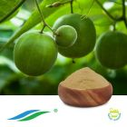 Monk Fruit Extract 25% Mogrosides V (DECOLORATION) (NON-GMO,cGMP)