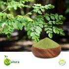 Moringa Leaf Extract 10% Saponins