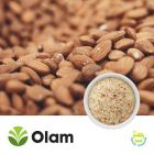 Natural Fine Almond Meal (Flour) by Olam