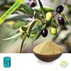 Olive Leaf P.E. 25% Hydroxytyrosol