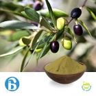 Olive Leaf Extract 40% Oleuropein by BannerBio Nutraceuticals, Inc.