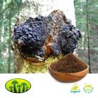 ORG Chaga Powder by Biosan
