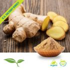 ground ginger root bulk