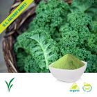 Organic Kale Powder by U.S. Greens