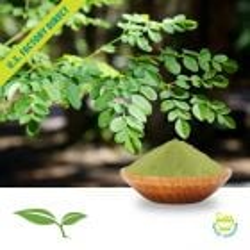 Moringa Leaf Powder by American Botanicals