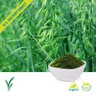 Organic Oat Grass Powder by Us Greens