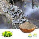 Organic Turkey Tail Powder by Biosan